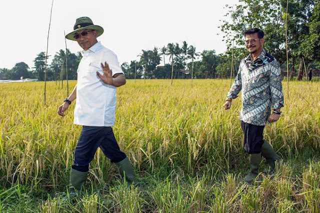 Reshuffle Jilid II Sudah Di Meja Jokowi, Menteri Asal Nasdem Ini Terancam Diganti