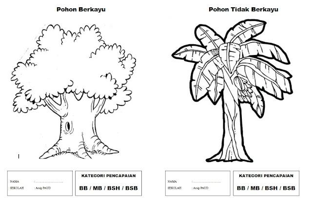 Contoh Gambar Gambar Mewarnai Anak Paud Tema Tanaman Sub Tema Jenis Pohon Arsip Paud