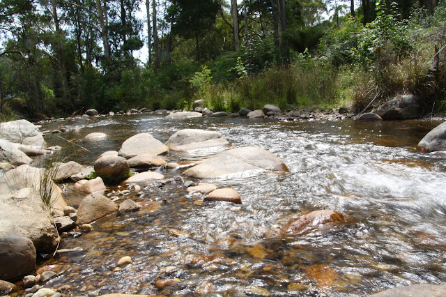 Delatite River at Mirimbah Park
