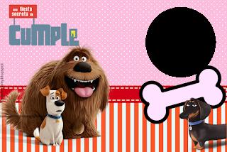 Para hacer invitaciones, tarjetas, marcos de fotos o etiquetas, para imprimir gratis de La Vida Secreta de las Mascotas.
