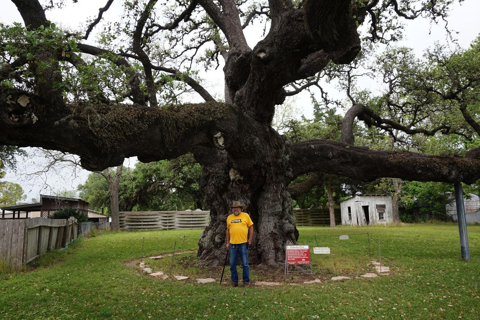 Jim In Front Of Tree
