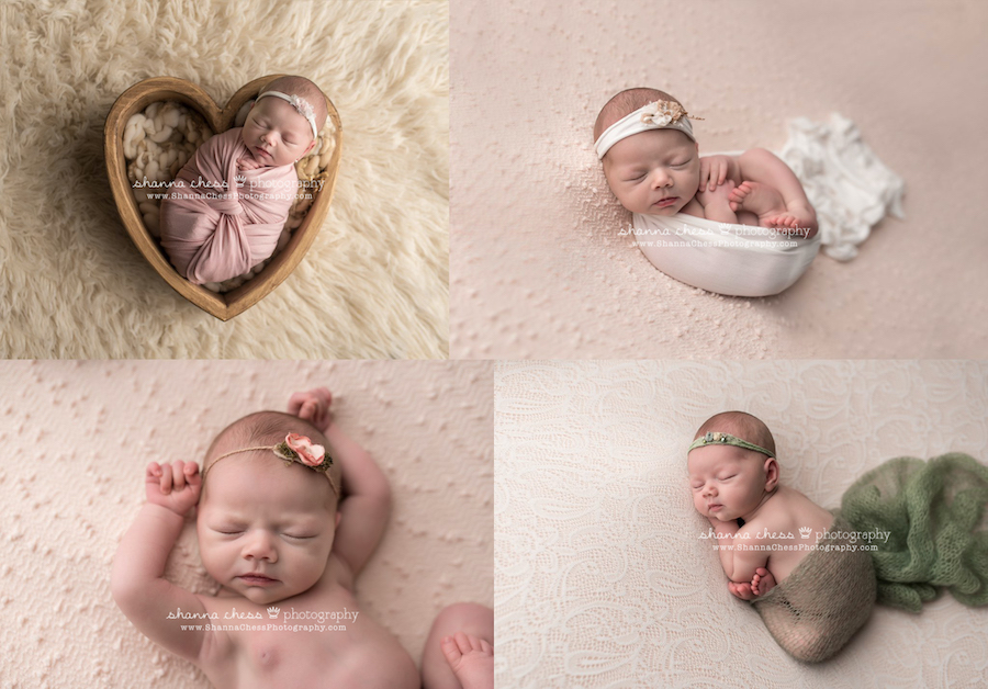 newborn photo studio eugene oregon