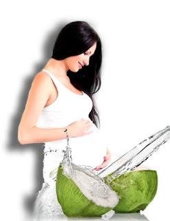 Panduan Makanan Sehat Untuk Ibu Hamil Muda