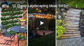 low maintenance backyard landscaping cost