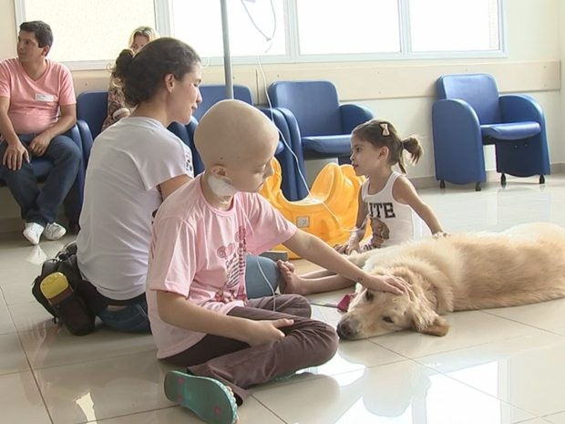 Animal Assisted Therapy (TAA)