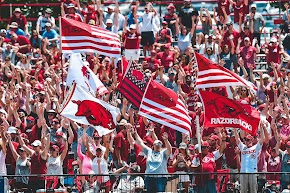 Arkansas in Top 25 finish of Director's Cup for great year of sports' victories