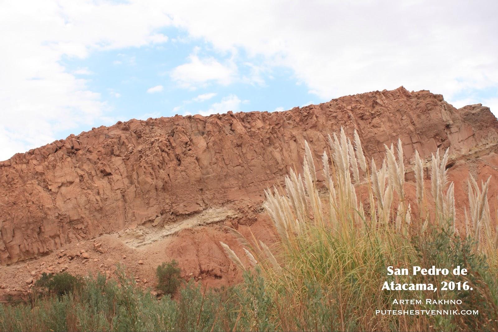 Скалы и трава в Атакаме