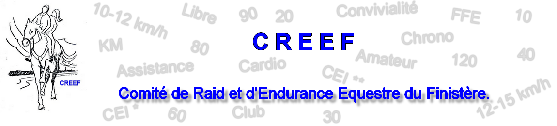 CREEF ENDURANCE 29