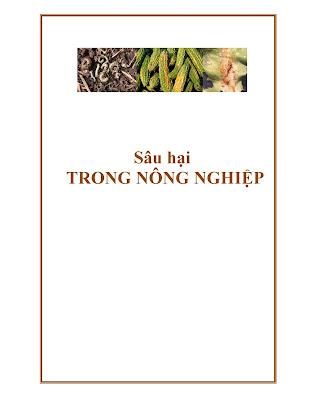 [EBOOK] SÂU HẠI TRONG NÔNG NGHIỆP