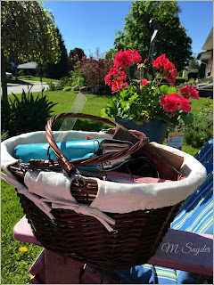 June 6, 2019 Enjoying sitting in our front yard and writing.