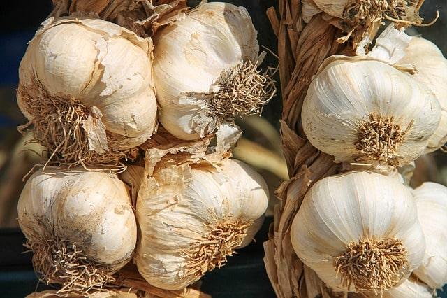 Bawang putih Sayuran Yang Bisa Dikonsumsi Mentah