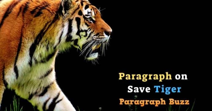 short paragraph on save wildlife