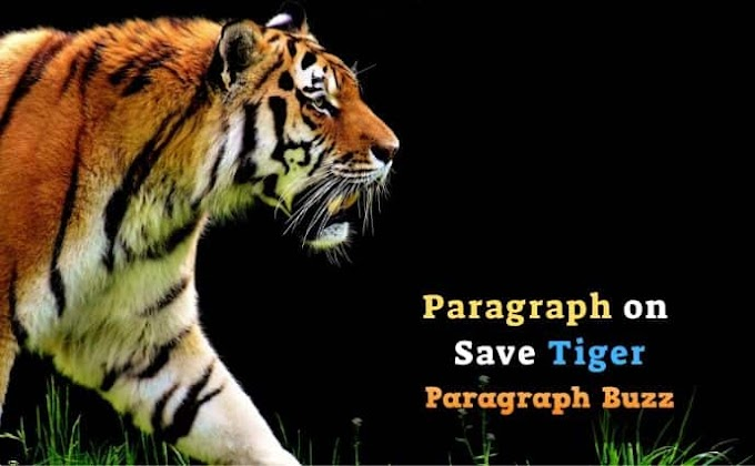 Paragraph on Save Tiger for Kids and Students