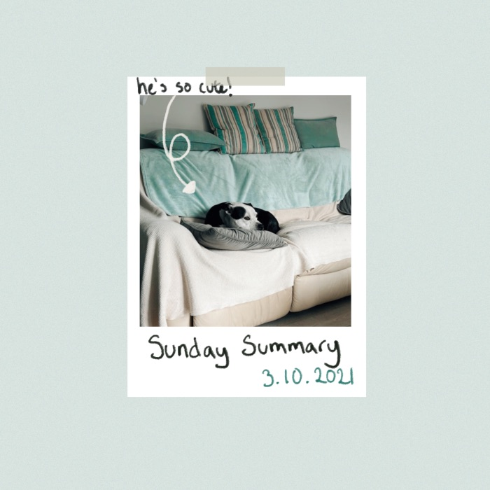 Pale blue background with Polaroid photo in the middle of my dog Milo. Black and white Staffordshire bull terrier curled up on a sofa with a grey cushion under him. Hand written text below saying Sunday summary 3.10.2021 And there's an arrow pointing at the dog saying he's so cute