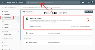 Cara Mengecek Artikel Sudah Terindeks Google