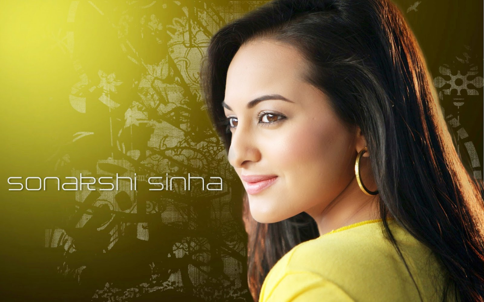 Sonakshi Sinha Hd Wallpapers: Sonakshi Sinha New HD Wallpapers 2014