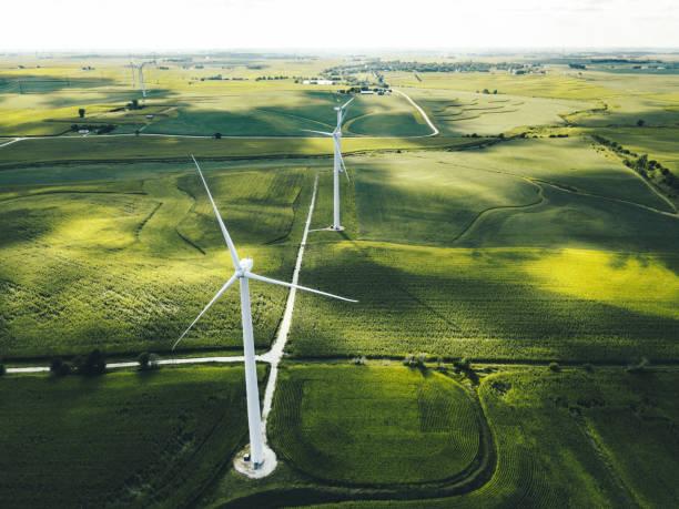 Schneider Sustainability Impact, program baru Schneider Electric wujudkan keberlanjutan dunia