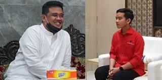 Gibran-Bobby Bikin Jokowi Belum Berani Lakukan Reshuffle, Dukungan Parpol Bisa Berubah