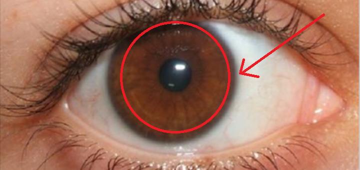 L'étude révèle les grands secrets des gens aux yeux bruns