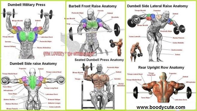 Shoulder Workouts For Men The 2 Best Routines For Bigger Delts