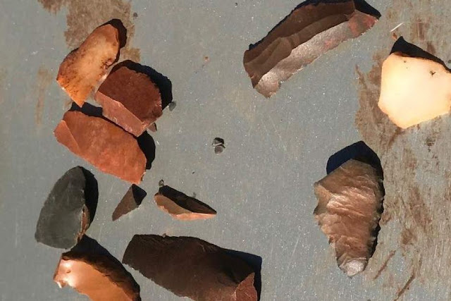 Evidence of ancient feast unearthed in Western Australia