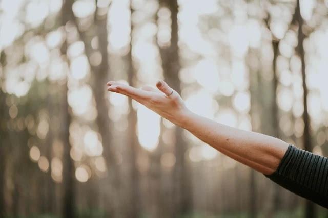 aprende ingles medicina salud mente bienestar espiritu tranquilidad paz