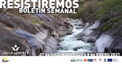 VALLE DEL JERTE, BOLETÍN SEMANAL (31 de diciembre 2020 a 8 de enero 2021)
