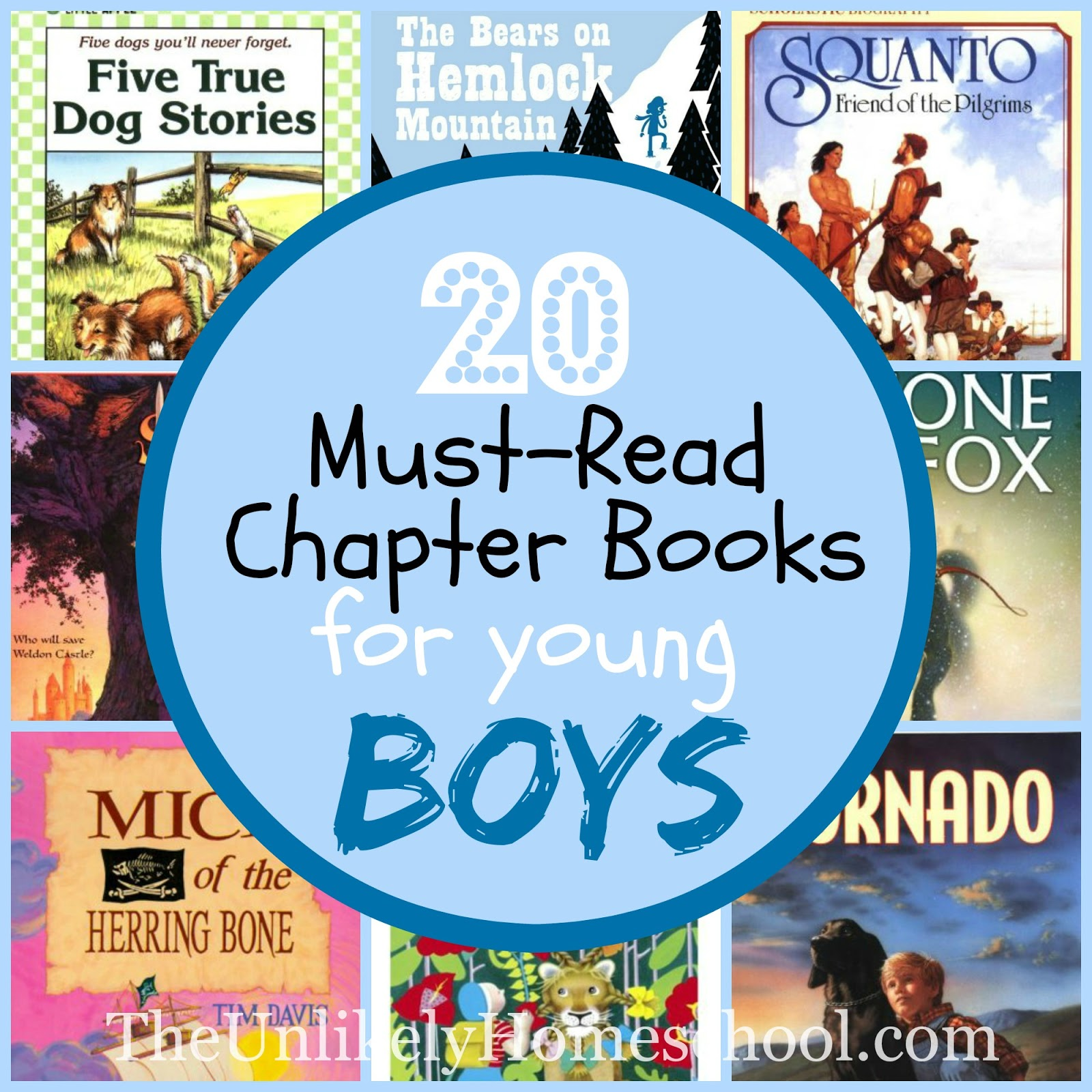 The Unlikely Homeschool 20 MustRead Chapter Books for Young Boys