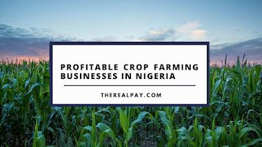 Profitable Crop Farming Businesses in Nigeria - Top 15
