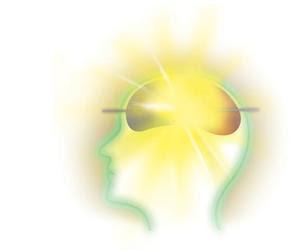 เผยผลวิจัยล่าสุด ในงานประชุมวิชาการ ชี้ว่าเปปไทด์จากไก่ ช่วยเพิ่มความสามารถของสมองด้านการจดจำ