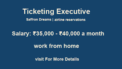 Ticketing Executive | airline reservations | Saffron Dreams
