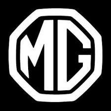 Mg motors india