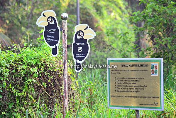 Hornbill Project Piasau Miri