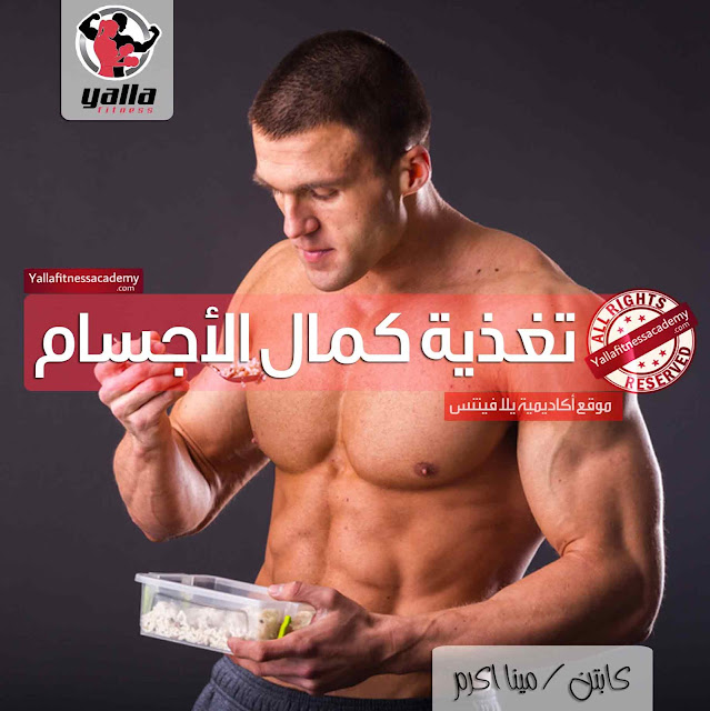 الدليل الشامل لتغذية لاعبي كمال الأجسام