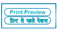 PrintPreview meaning in HINDI