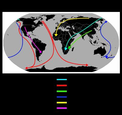 Ejemplos de rutas de aves migratorias