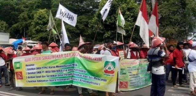 Belum Digubris Jokowi, Serikat Petani Simalingkar Akan Longmarch Dan Bikin Tenda Di Istana Negara