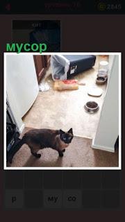 кошка устроила мусор в комнате и стоит смотрит
