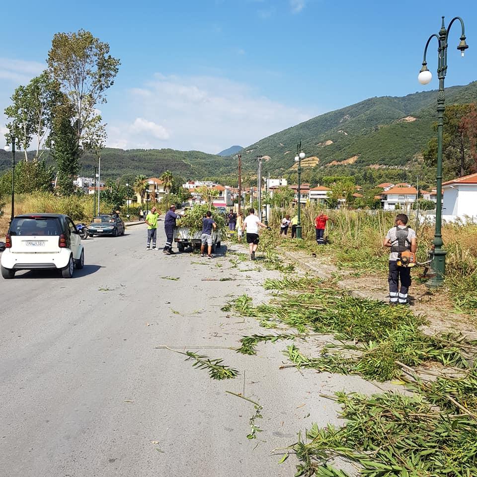 Εθελοντικές δράσεις στο Δήμο Αριστοτέλη  (φώτο)