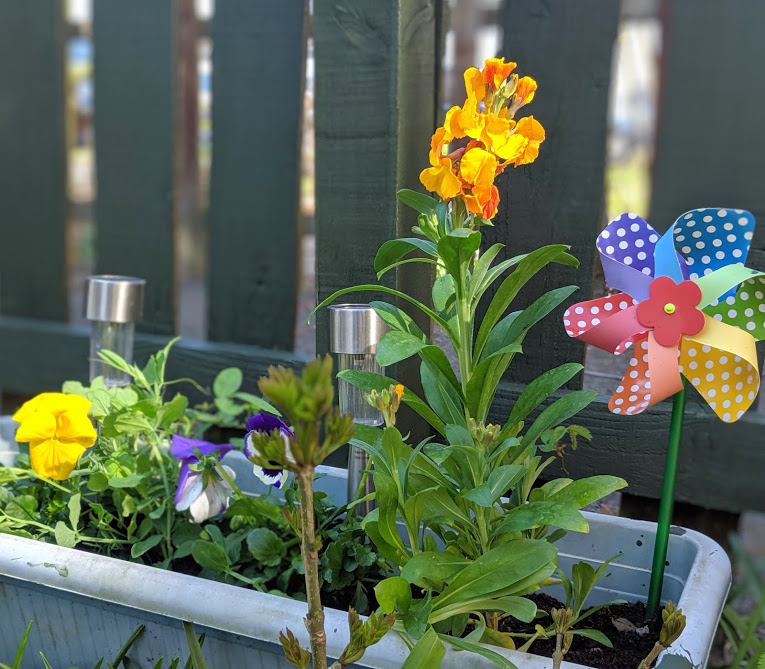 8 Easy Ways to Have Fun in your Garden this Summer  - plant flowers
