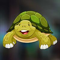 Play AvmGames Sulcata Tortoise…