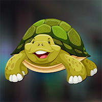 AvmGames Sulcata Tortoise…