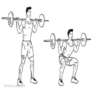 2- Barbell Back Squats :
