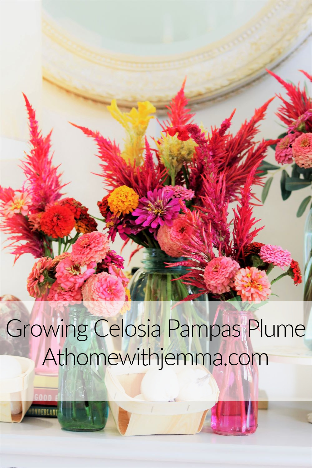 flower-grower-garden-gardening-information-sprouting-drying-bouquets-athomewithjemma