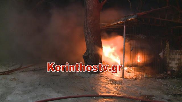 Κάηκαν ολοσχερώς δυο αυτοκίνητα στις Κεχριές Κορινθίας (βίντεο)