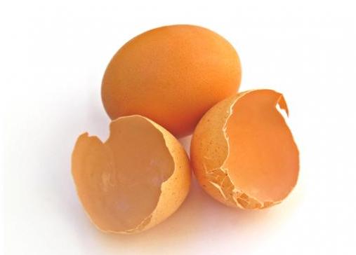 Gambar Manfaat Kulit Telur