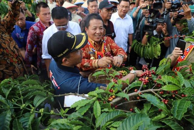 Gengsi Kopi Lampung, Gubernur Lampung Arinal