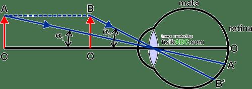 sudut pandang atau sudut penglihatan mata sebagai prinsip dasar kerja lup (kaca pembesar)