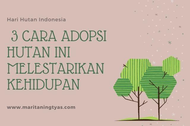 3 cara adopsi hutan untuk melestarikan kehidupan
