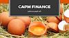 CAPM finance python